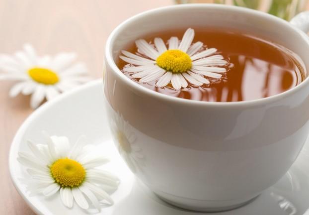 Image result for teh chamomile