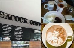 Alamat Lokasi Peacock Coffee Semarang
