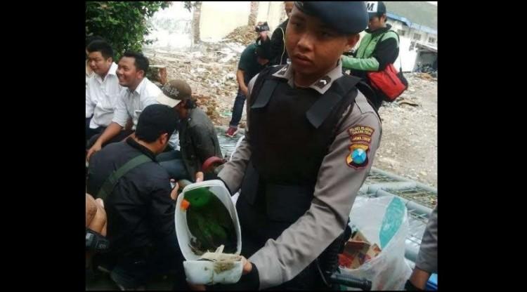 Polisi juga menemukan Burung Bayan yang dimasukkan ke dalam jerigen