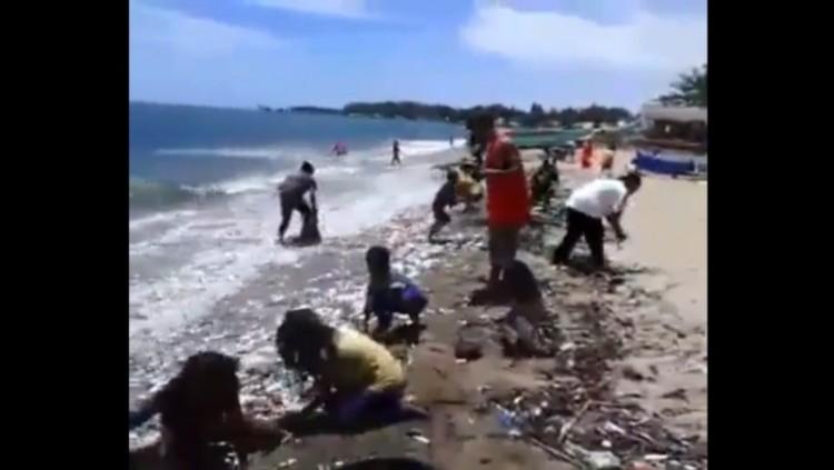 Video panen ikan di pantai