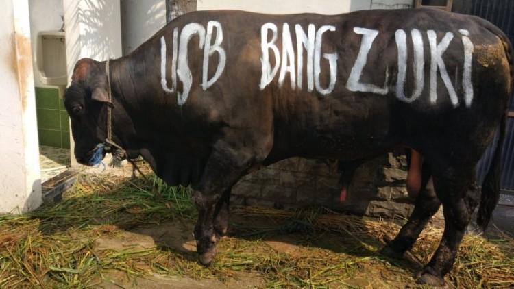 Lulung potong sapi USB Bang Zuki