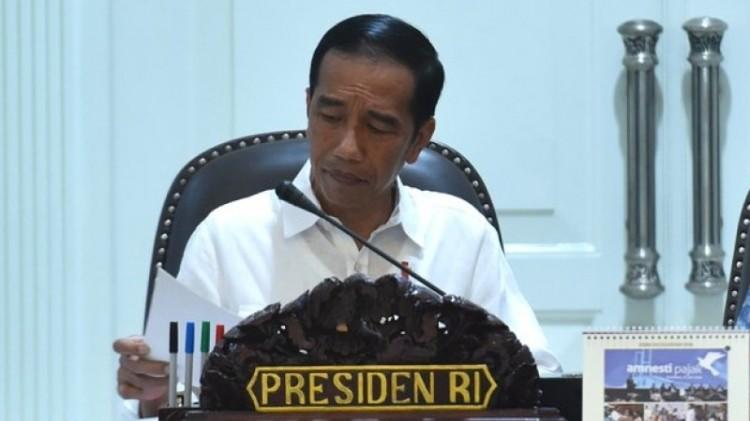Jokowi saat memimpin rapat kabinet