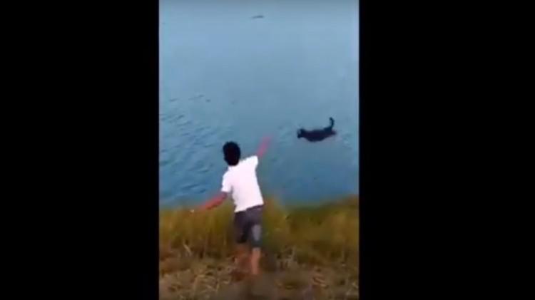 Aksi seorang pria lempar anjing ke buaya di sungai