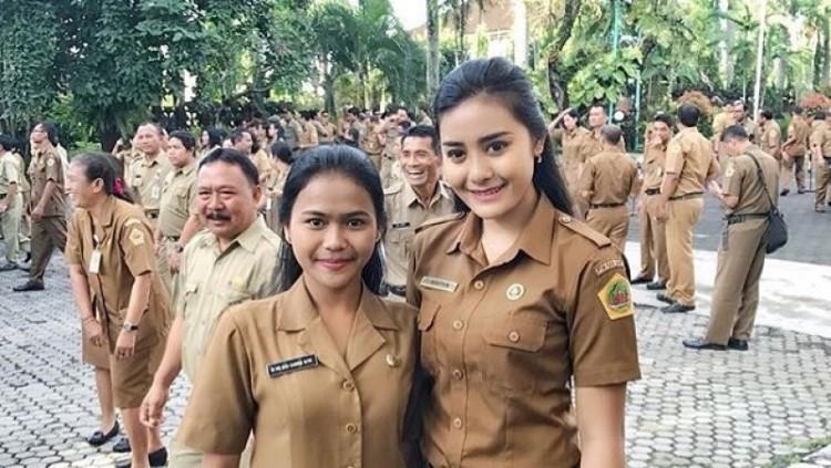 Ilustrasi PNS Indonesia